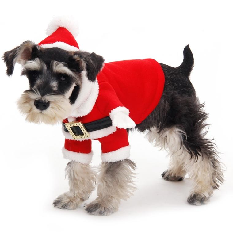 abbigliamento per cani fai da te natalizio