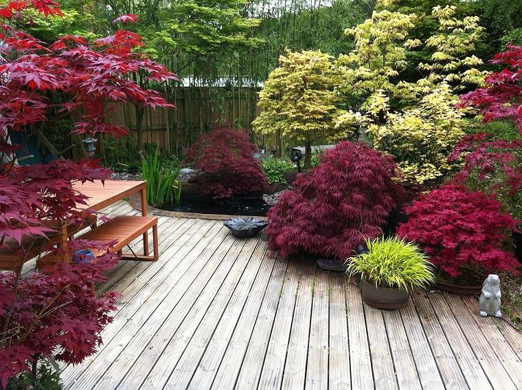 Acero giapponese la leggenda e alcuni consigli per farlo crescere rigoglioso - Piante per giardino giapponese ...