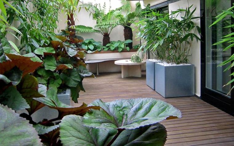 Come abbellire un balcone, vasi piante dalla foglia verde, balcone con pavimentazione in legno