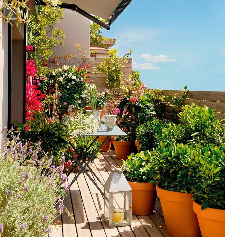 Arredare il terrazzo con mobili moderni per un outdoor da sogno - Piante per il terrazzo ...
