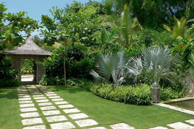 atmosfera tropicale giardino moderno sentiero realizzato lastre calcestruzzo
