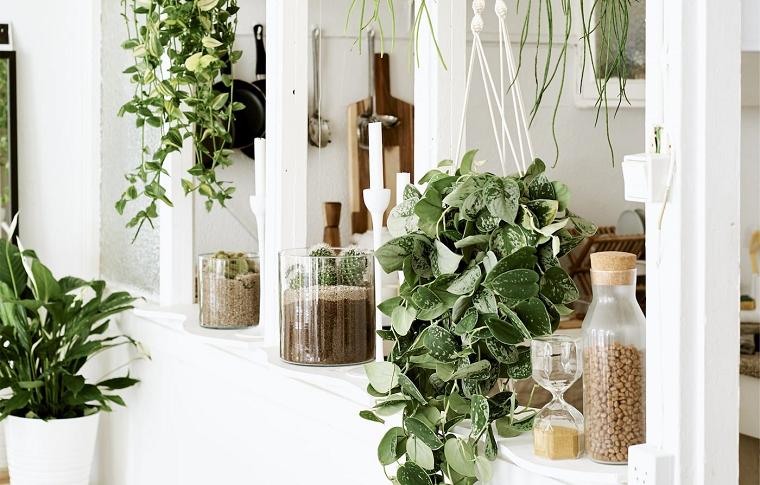 balcone decorato con piante vasi con piante dalla foglia verde terrazzo arredato