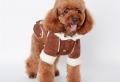 Vestiti per cani: per affrontare il cambio di stagione ben preparati