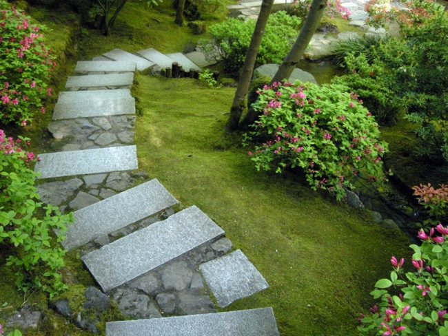 giardini moderni giapponesi sentiero realizzato piastre calcestruzzo piatre cespugli