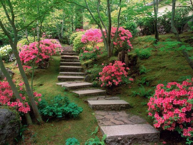 giardini moderni stile giapponese piccole stradine blocchi calcestruzzo pietre