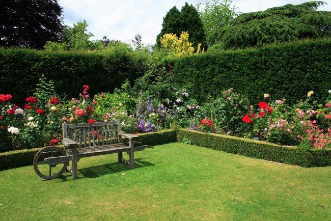 giardini moderni siepi recinzione panchine giardino legno
