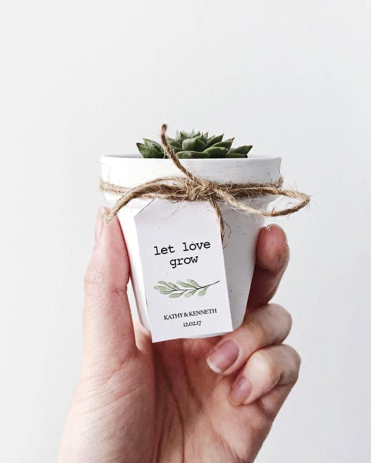 mini pianta grassa in vaso bianco regalo bomboniera matrimonio con etichetta personalizzata