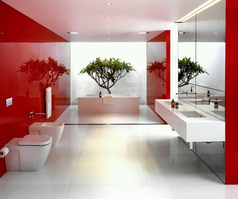 Piante da interno alcune idee per disporle in modo originale - Piante da bagno ...