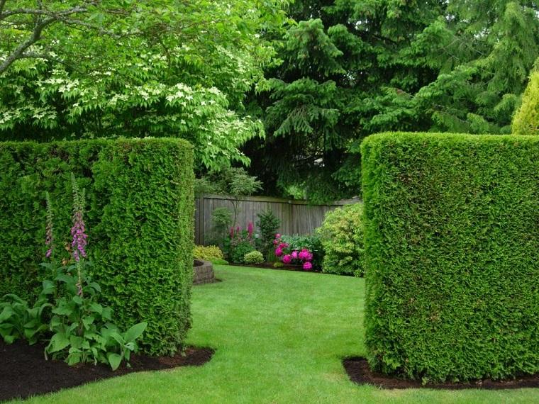 recinzione originale piante verdi idea straordinaria