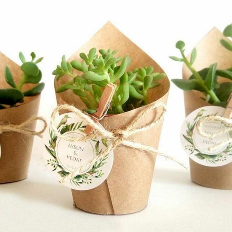 regalo per matrimonio bomboniera vaso di pianta grassa avvolto in carta