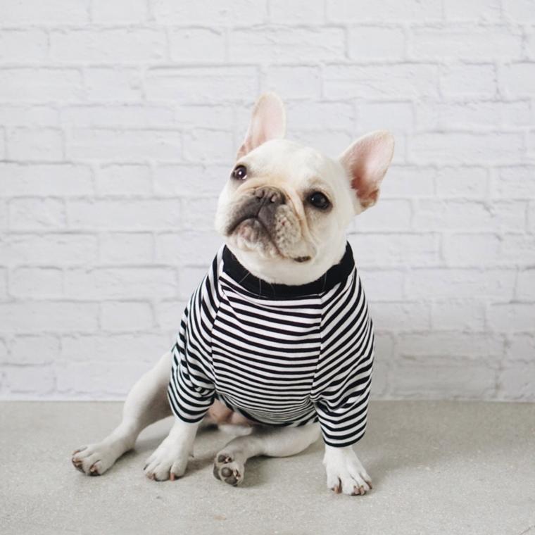 vestiti per cani fatti mano