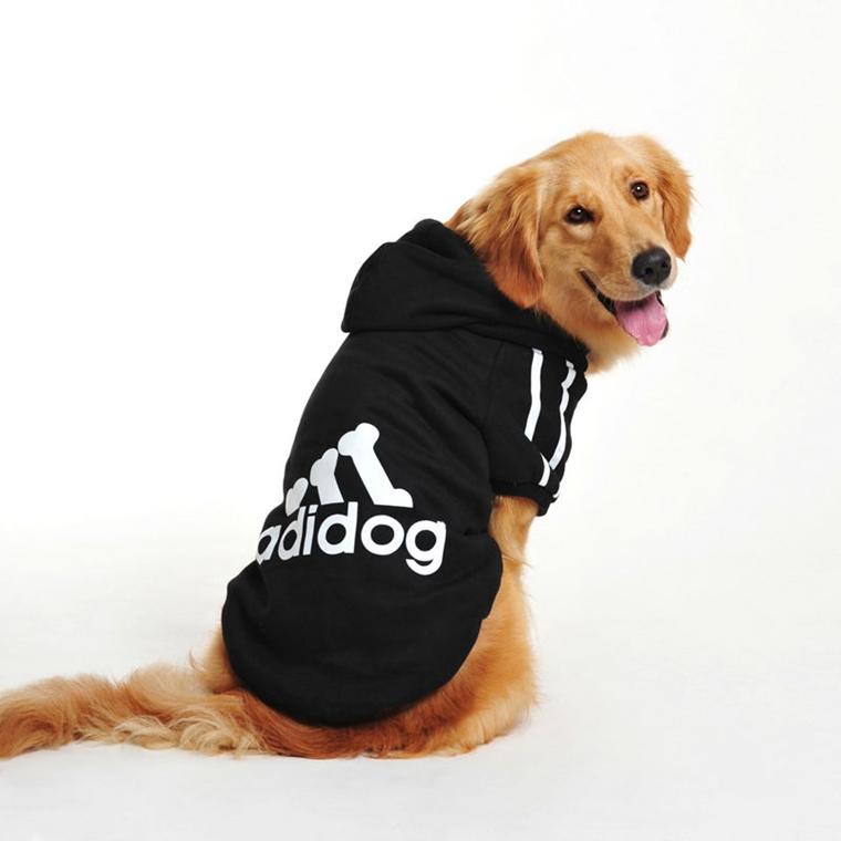 vestiti per cani realizzati abiti vecchi