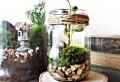 Primavera – suggerimenti particolari per decorazioni mozzafiato