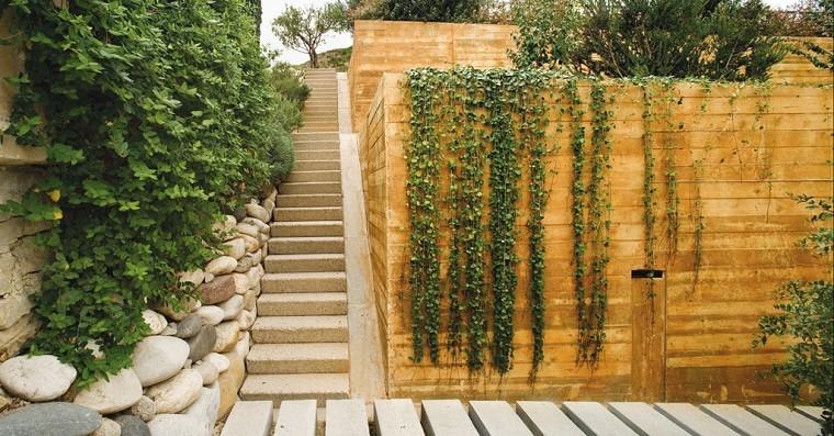 come abbellire un giardino piante rampicanti
