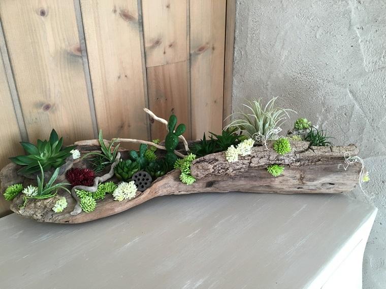composizione piante grasse per interni