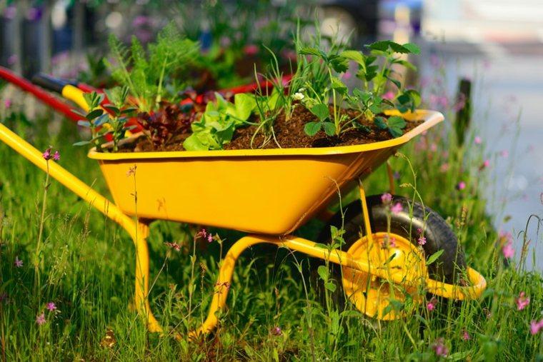 decorazioni giardino fai da te carrello colore giallo