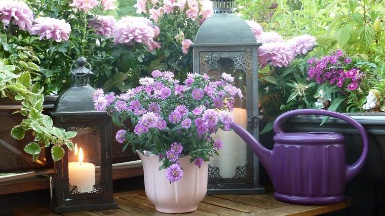 fiori e piante decorazione elegante balcone