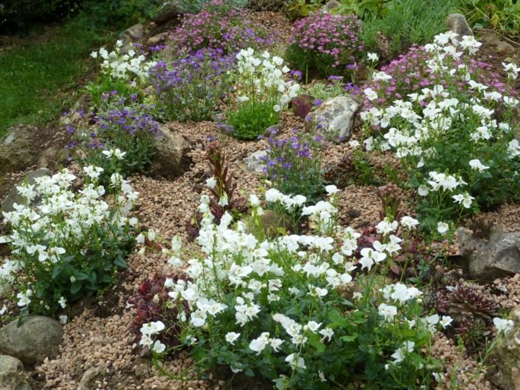 giardini rocciosi idea interessante angolo verde