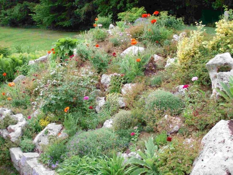 giardini rocciosi proposta fresca vivace