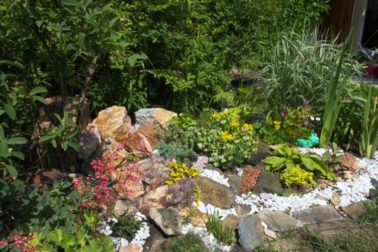 giardini rocciosi suggerimento angolo verde sogno