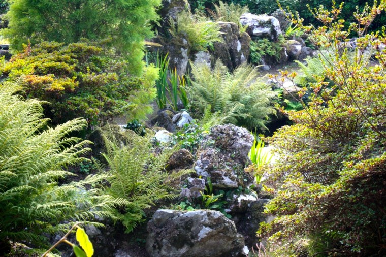 giardini-rocciosi-suggerimento-fresco-particolare