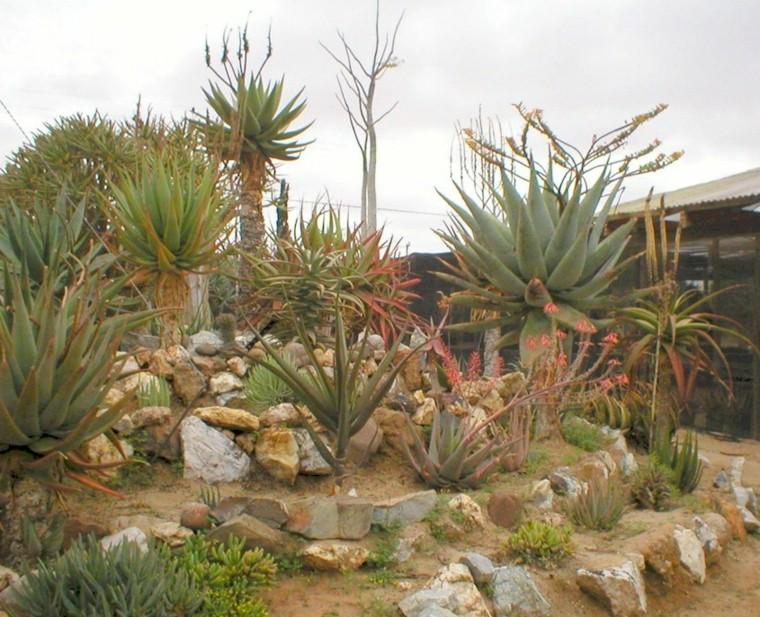 giardino idea particolare originale area verde