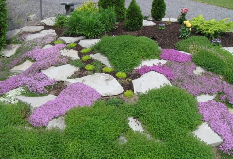giardino roccioso idea fresca colorata vivace