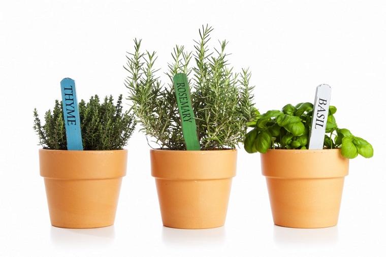 piante da balcone tre vasi erbe aromatiche