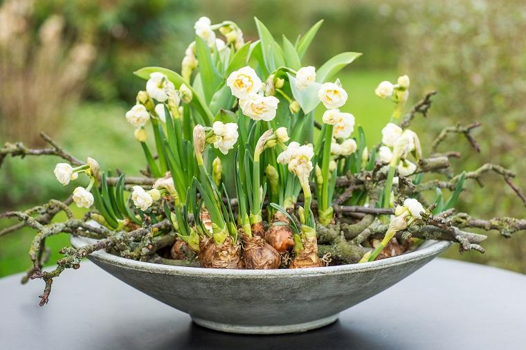 balconi fioriti narcisi vaso ovale