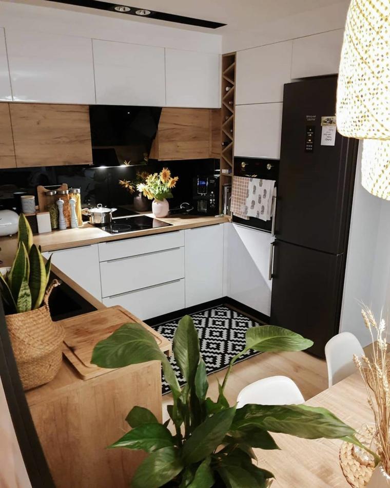 decorazione con piante da appartamento cucine piccole ad angolo con isola
