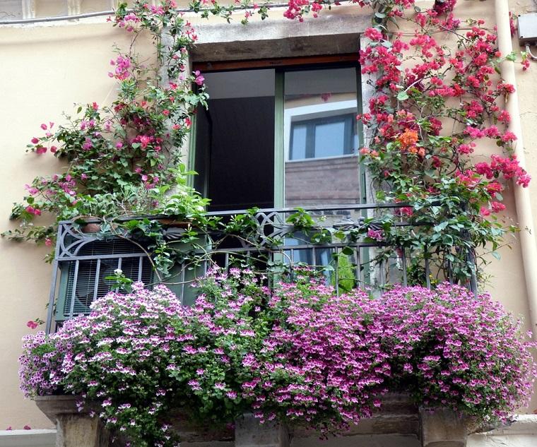 Fiori da balcone le specie più belle ed adatte ad essere