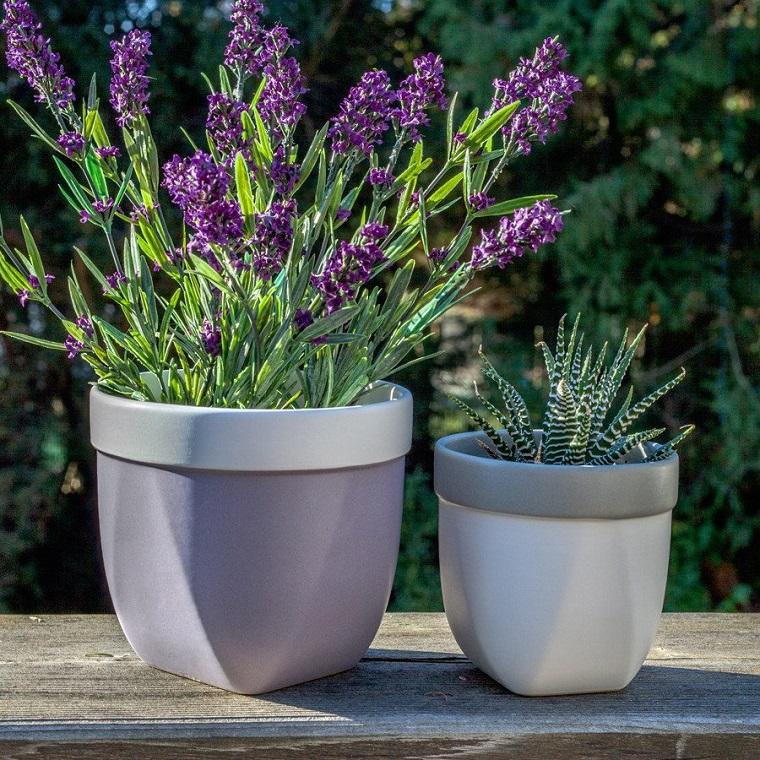 fiori per balconi lavanda vasi design