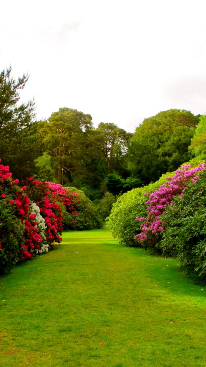 paesaggi proposta originale verde fresca