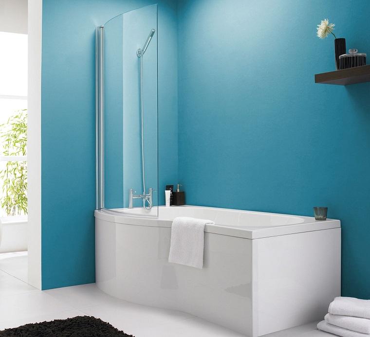 vasca da bagno con doccia unico pannello