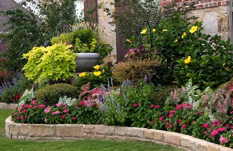 Aiuole per giardino tante composizioni piene di colori for Aiuole profumate