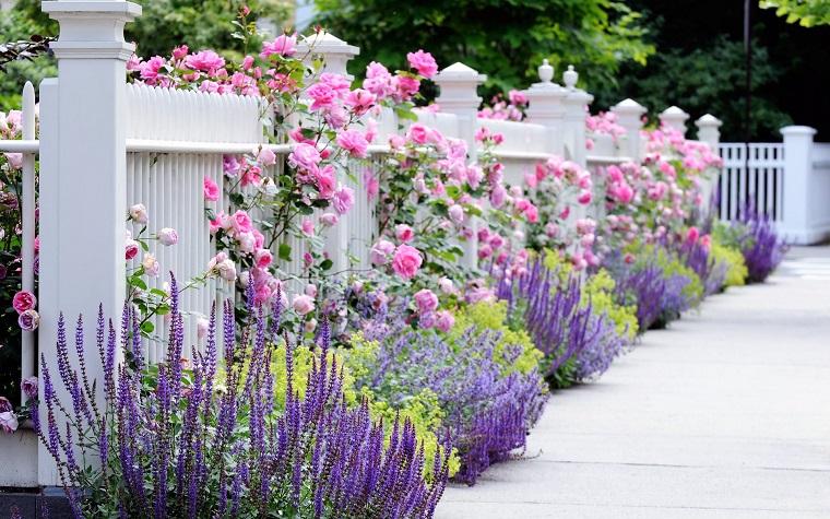Aiuole per giardino tante composizioni piene di colori - Vialetto giardino economico ...