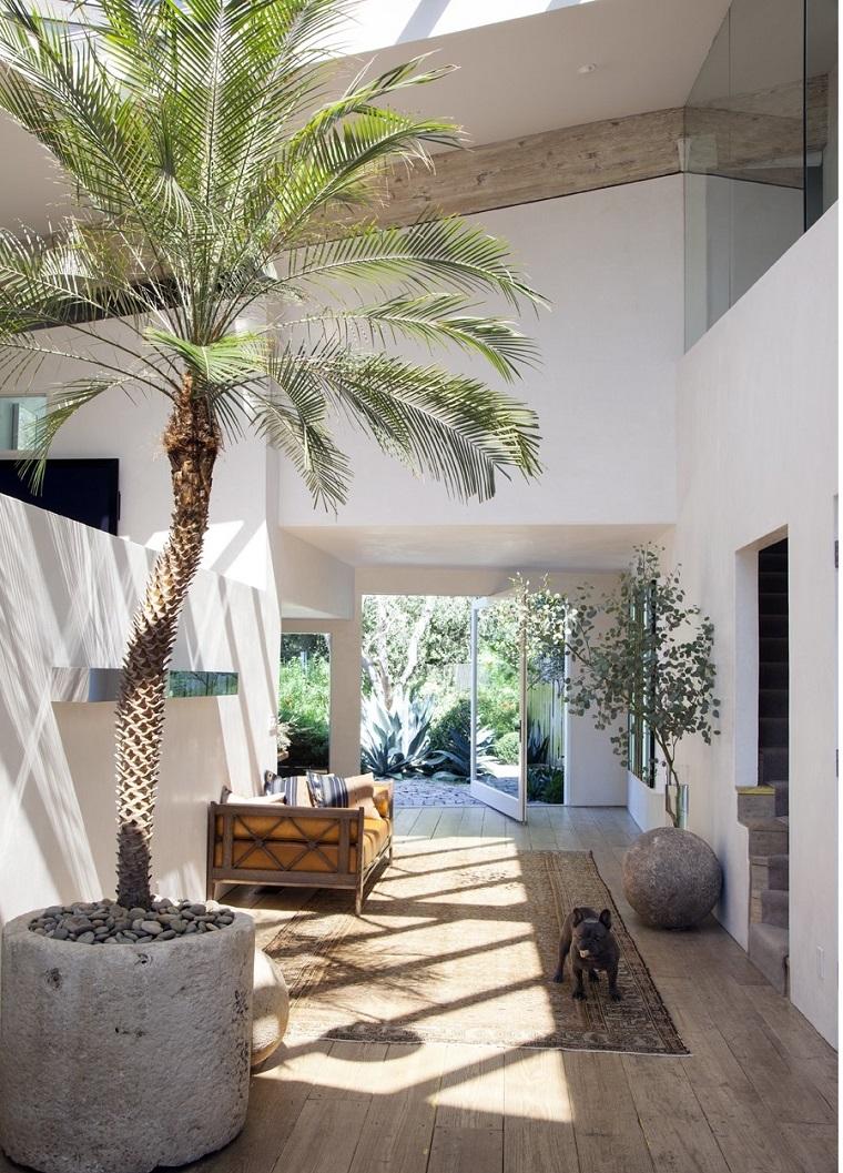 decorare-casa-area-esterna-piante-verdi