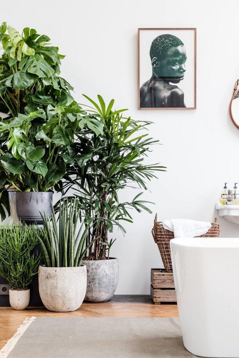 decorare-casa-piante-tropicali-idee