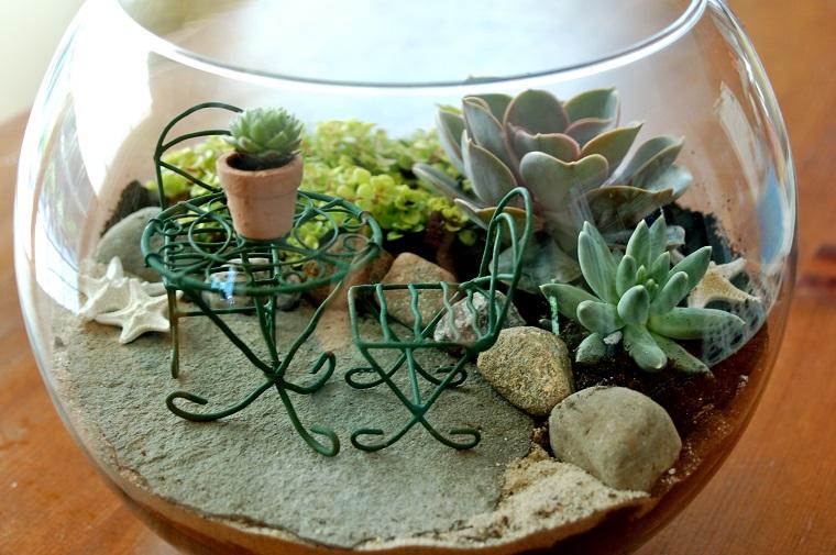 giardini in miniatura-acquario-piante-grasse