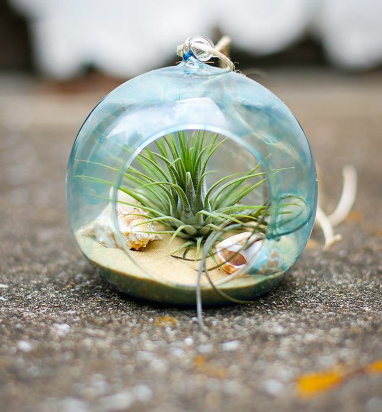 giardino-miniatura-idea-fai-da-te