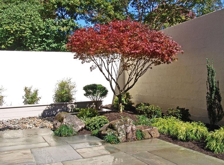 giardino moderno-stile-giapponese-acero
