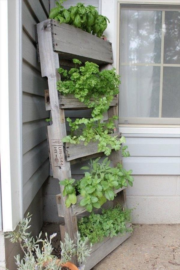 giardino-verticale-semplice-originale-particolare