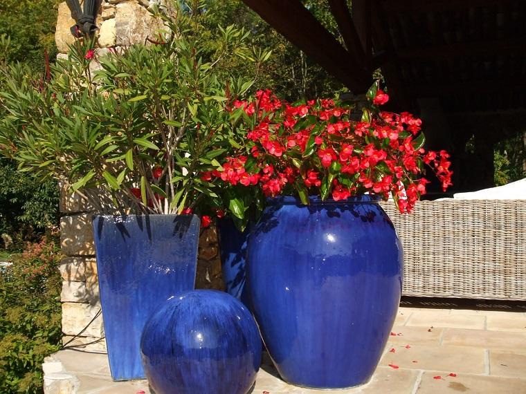 oleandri-idea-colore-rosso-vaso-blu