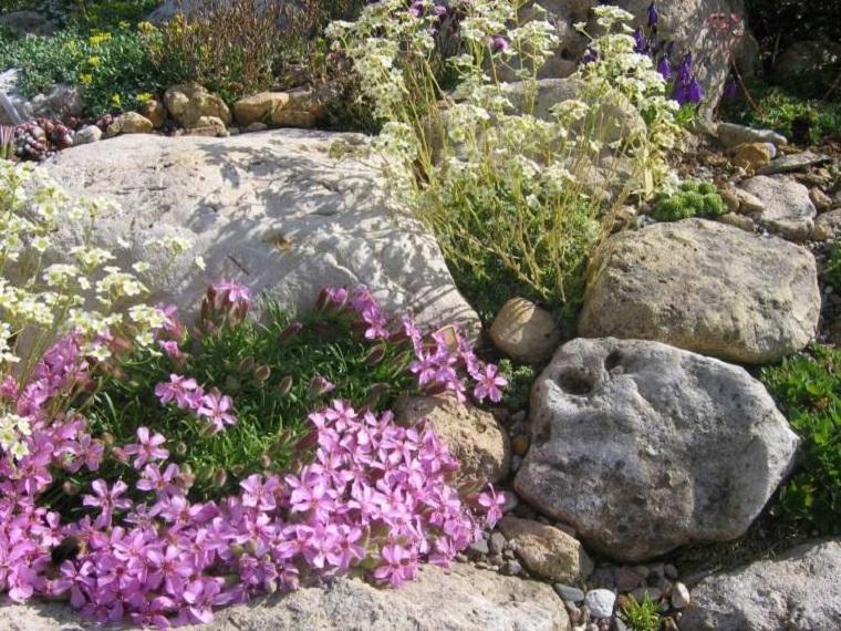 outdoor-originale-creatico-piante-fiori