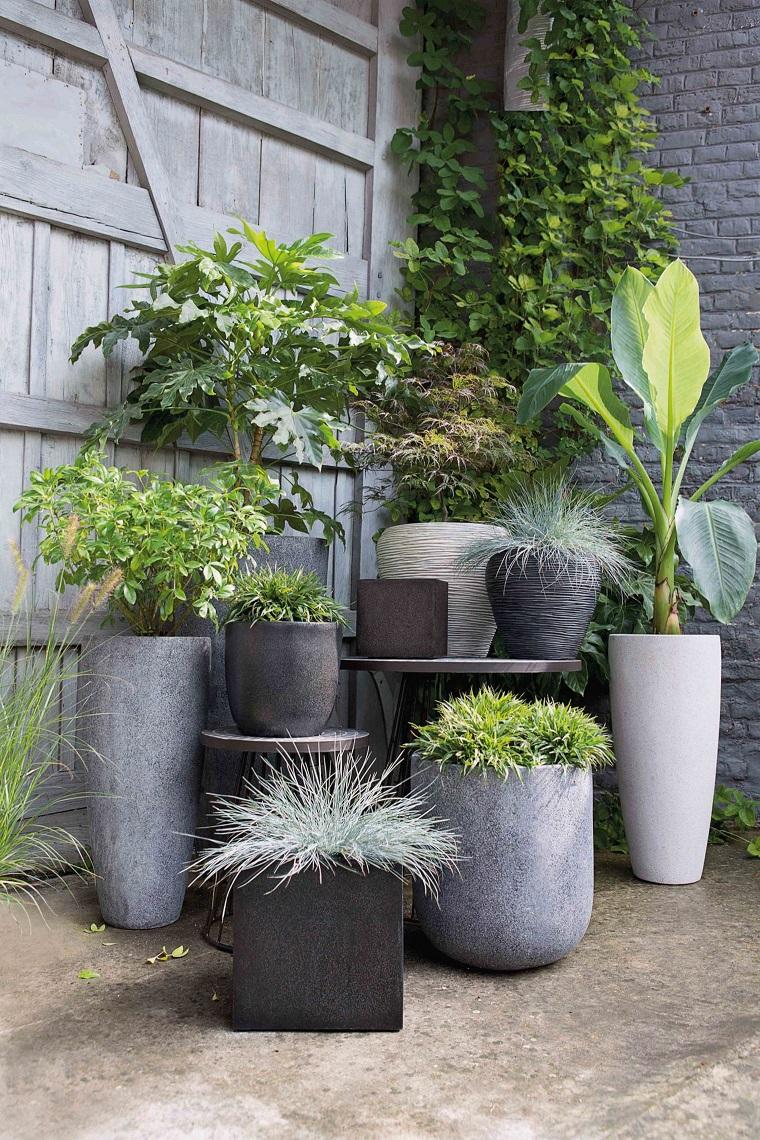 piante-da-balcone-composizione-particolare