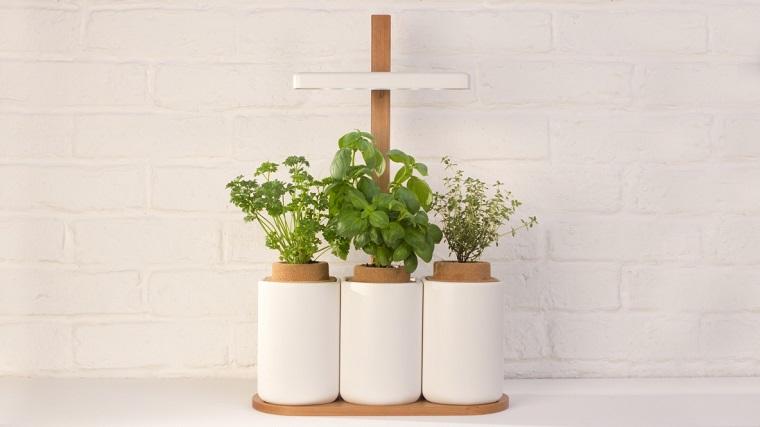 piante-da-balcone-idea-quelle-aromatiche