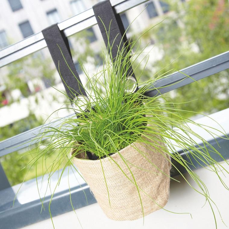 piante-da-balcone-vaso-originale