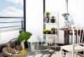 Piante per balconi: tutte le soluzioni per un angolo sempre fiorito