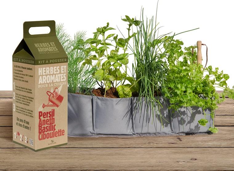 piante per balconi-idea-originale