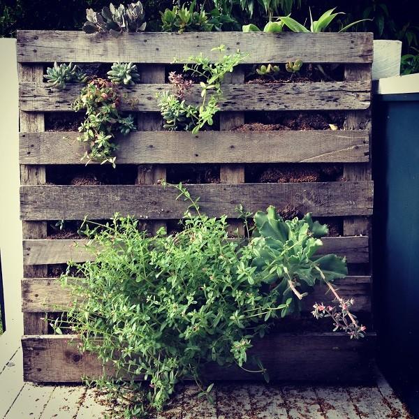 proposta-particolare-originale-giardino-verticale